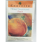 0307430 - Peach Home Traditions Sachet
